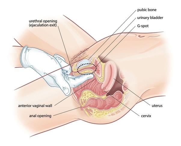 Shower massage porn